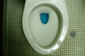 How to test for a leaky toilet